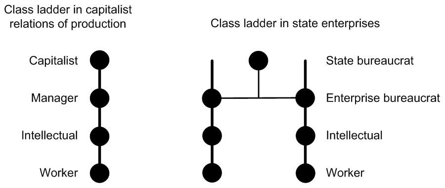 Class Ladders