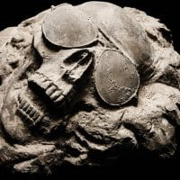 Skull with Sunglasses fossil