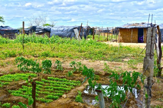 | An occupation Camp in Filhos da Luta Pernambuco in 2014 Photo by Mel Gurr | MR Online