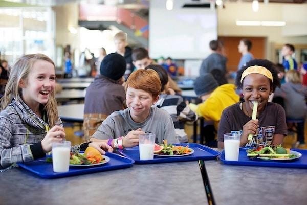 Why Should Schools Have Salad Bars?