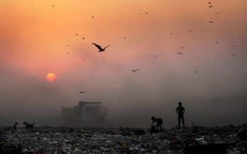 A garbage dump in New Delhi