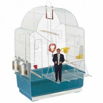 A Li'l Orange President, a product of trumPets®, first name in Trump-survival products!, stands on his cage door. | SUSIE DAY