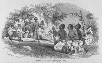 """Halting at Noon."" Slaves kneeling to pray while chained together. (New York Public Library)"