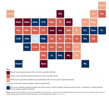 Patterns of gender disparities in state prison populations in 2009