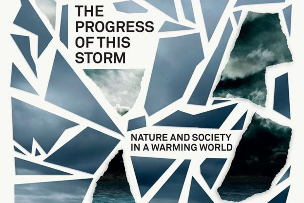 Cropped cover of The Progress of this Storm by Andreas Malm