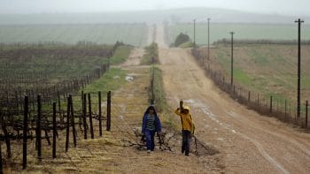 APTOPIX South Africa Farmworker Abuse