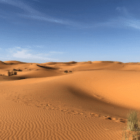 The Sahara Desert (Source | The Mind Unleashed)