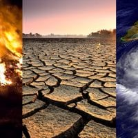 Effects | Facts – Climate Change- Vital Signs of the Planet