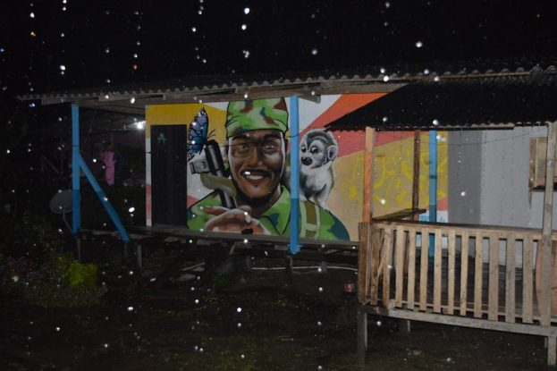 Mural in one of the FARC reincorporation zones.