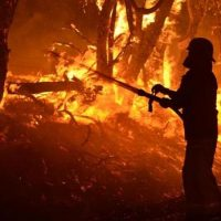 Scorched earth- capitalism, climate change and Australia's bushfire threat