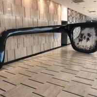 """Allende's Glasses"""