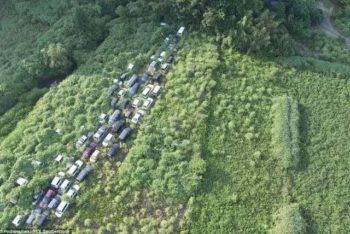 This weed-covered land was once a busy road. Victims of the disaster abandoned their cars to escape.