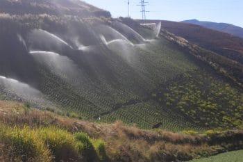 Sprinkler irrigation in steep field