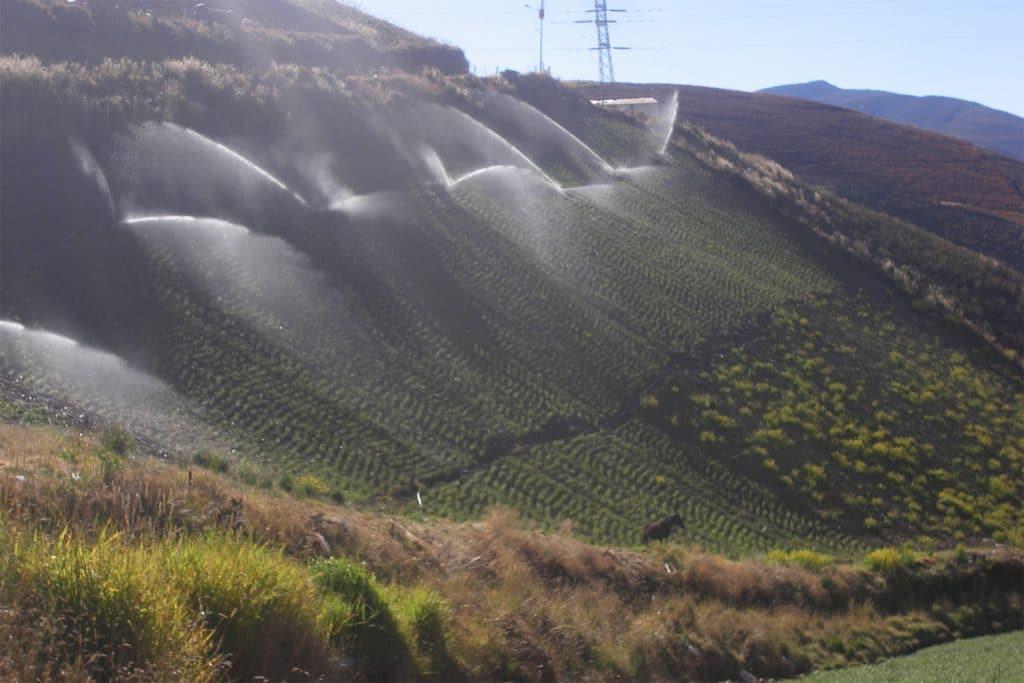 | Sprinkler irrigation in steep field | MR Online