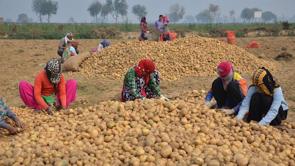 PepsiCo and Monsanto's Bogus Court Cases are War on Indian Farmers (Image courtesy: CNN.com)
