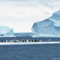 Why is the Arctic melting faster than the Antarctic? | Environment ... DW