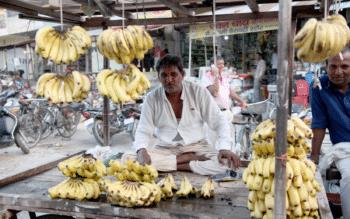 Fruit vendor in Fatehabad, Haryana. July 2018. Photo credits: Celina della Croce