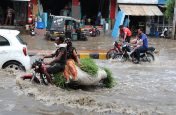 After a little rain in Tohana, Haryana. July 2018. Photo credits: Celina della Croce