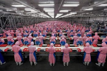 Edward Burtynsky, Manufacturing #17, Deda Chicken Processing Plant, Dehui City, Jilin Province, 2005.