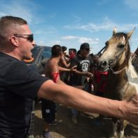 Native American protesters and their supporters are confronted by private security guards at a work site for the Dakota Access pipeline, near Cannon Ball, N.D., on Sept. 3, 2016. Photo: Robyn Beck/AFP/Getty Images