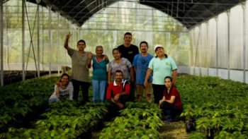 Workers of the Social Production Company Che Guevara 2021 of the Che Guevara Commune, in the Mérida state.