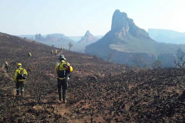 Una intensa campaña en contra de Evo Morales se desarrolla para responsabilizarlo por la quema de un bosque en Bolivia (Foto- Infobae)