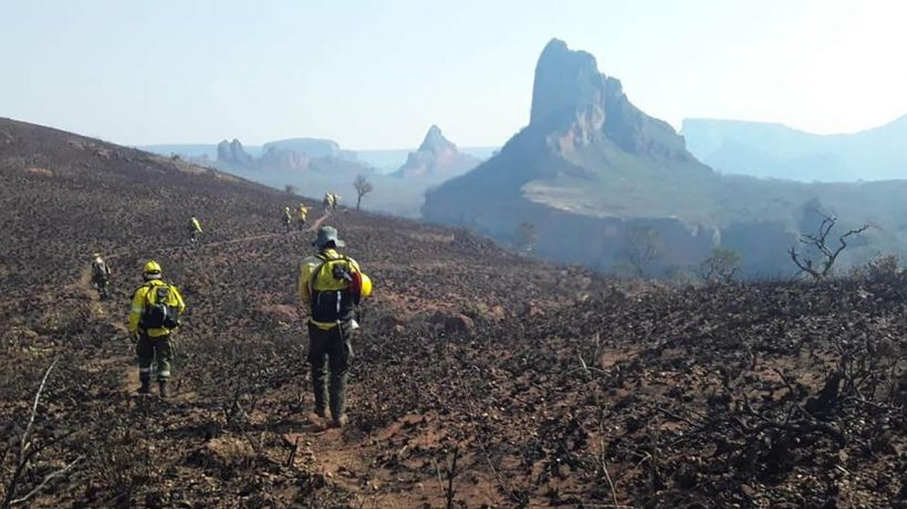 | Una intensa campaña en contra de Evo Morales se desarrolla para responsabilizarlo por la quema de un bosque en Bolivia Foto Infobae | MR Online