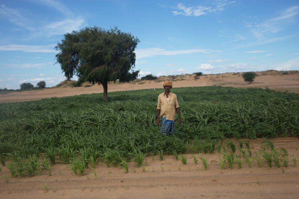 | Twenty years ago Pujari Linganna had to uproot vegetation for a film shoot | MR Online
