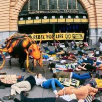 Roger and me – a socialist view on Extinction Rebellion