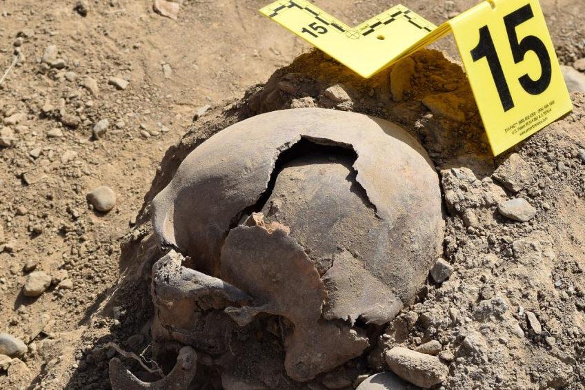 | Skull from a mass grave in DashteLeili | MR Online
