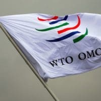 Enrique Mendizabal - WTO