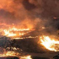 Australia's profit-driven apocalypse
