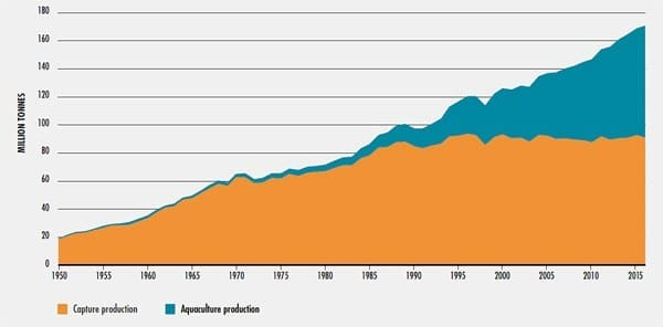 Aquaculture grew 10% a year in the late 20th century, and is growing 5.8% a year now. UN Food and Agriculture Organization, The State of the World Fisheries and Aquaculture 2018, 2.
