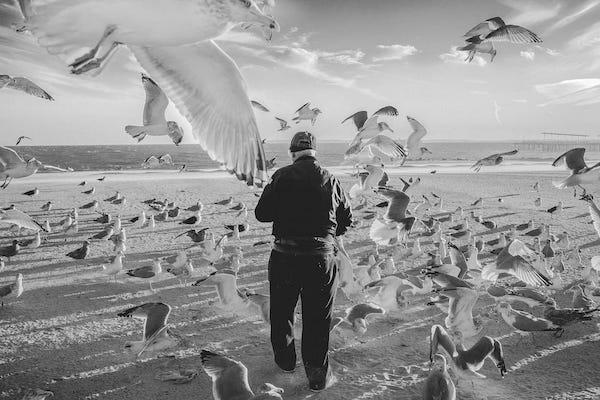 Luc Kordas, Coney Island, 2016.