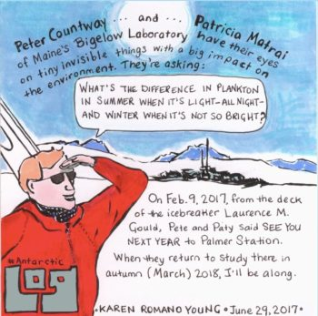 "Figure 3. In the webcomic Antarctic Log, the reader sees visual ""postcards"" from an Antarctic expedition. Image courtesy of Karen Romano Young antarcticlog.com"
