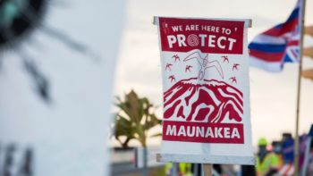 A protester displays a banner about protecting Maunakea from the Thirty Meter Telescope in August 2019.  (Image credit: Matt Gush/Shutterstock)