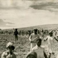 Labour strike at Buckey's Estate, St Kitts. (Source: https://libcom.org/library/labour-rebellions-1930s-british-caribbean-region-colonies-richard-hart)