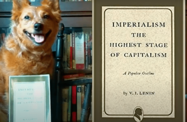 | Imperialism The Highest Stage of Capitalism by Vladimir Lenin Review ft Peter Coffin | MR Online