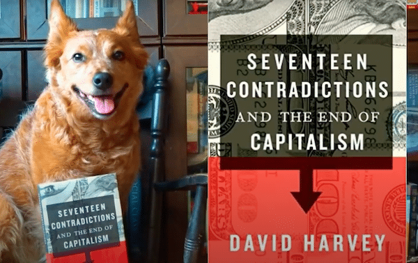 17 Contradictions and the End of Capitalism by David Harvey - Review (ft. Mad Blender)