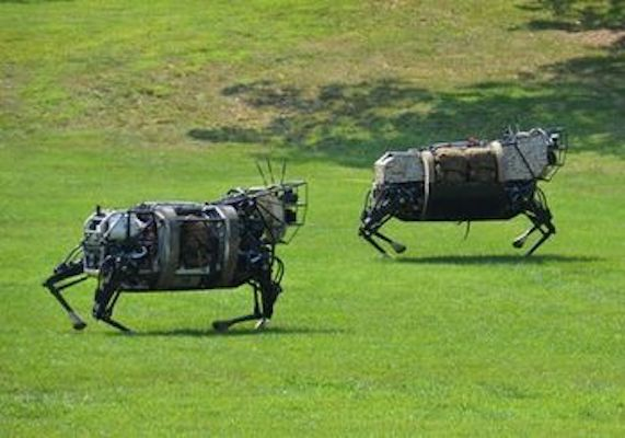 Robot sheep (Source: pinterest.com)