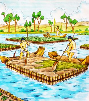 Depiction of Chiampas, a highly productive form of aquaculture practiced in the pre-Columbian Americas.