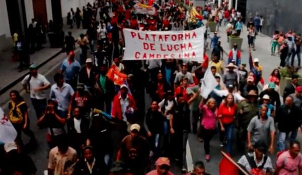Revolutionary Organization in Venezuela