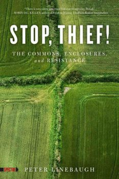Cover of Stop Thief! by Peter Linebaugh