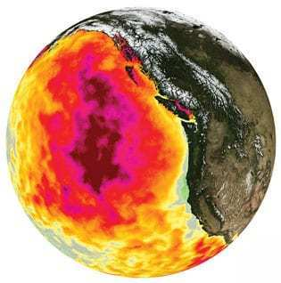By early 2015, The Blob covered a vast area in the northeastern Pacific. Colors show variation from normal water temperatures. Source: C.L. Gentlemann et al., Geophysical Research Letters, December 2016]