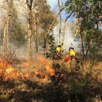 Prescribed fire on the Yurok Reservation, California