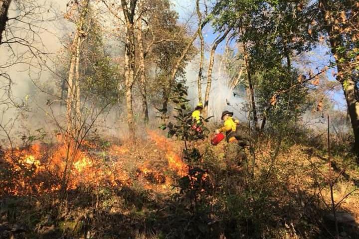   Prescribed fire on the Yurok Reservation California   MR Online