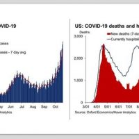 COVID Infections/Deaths