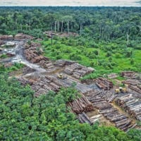 Illegal logging on Pirititi indigenous Amazon lands. (Photo: Flickr - quapan)
