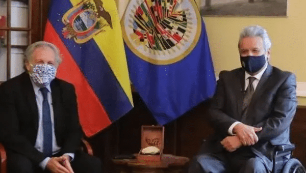 | The OAS Ecuadors neoliberal president are looking to suspend elections so as to cling on to power and stop the coming victory of the Correísta left | Photo TwitterOVargas52 | MR Online