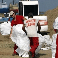 | Freedom Rider Forced Labor in the US | MR Online